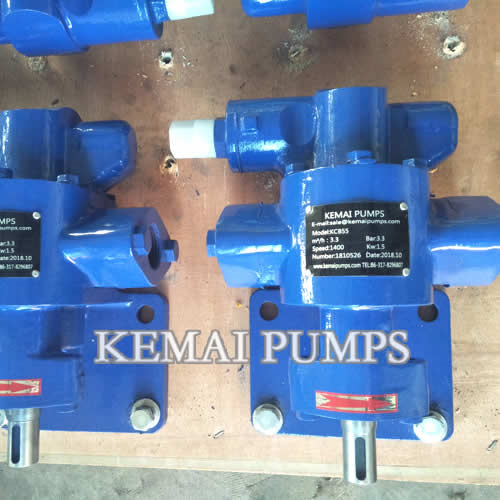 1 Inch Gear Oil Pump