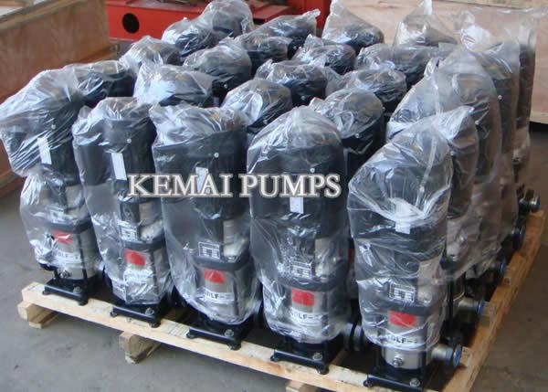 CDLF vertical multistage centrifugal pumps
