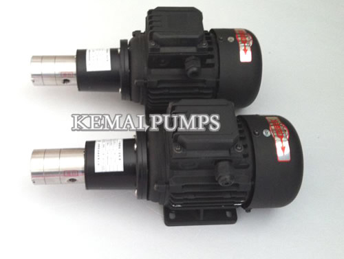 GM magnetic drive gear pumps