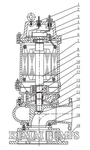 submersible pumps structure