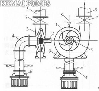 Single stage single suction centrifugal pump structure