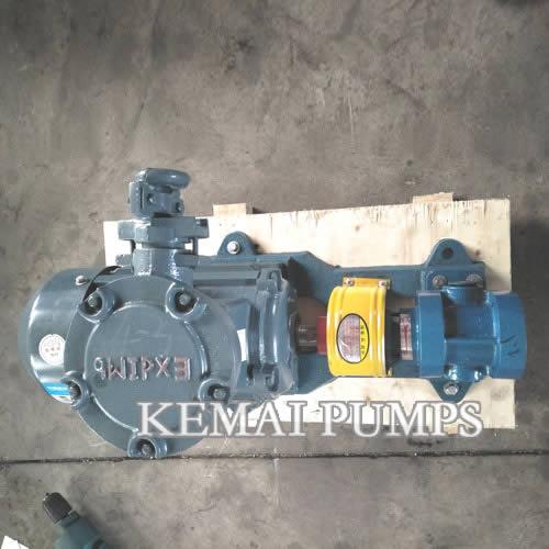 2CY Gear Pump With Motor