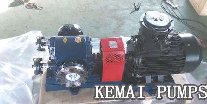 Gear pump for asphalt mixing plants