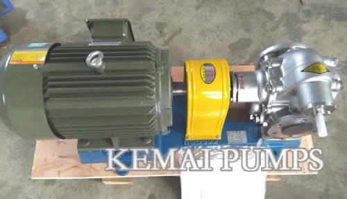 K Series Stainless Steel Gear Pump