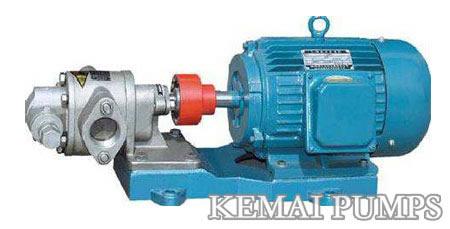 Stainless Steel Gear Pump