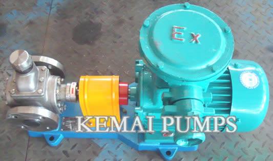 Y Series SS Gear Pump